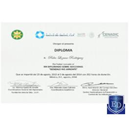 XIX Diplomado de Adicciones Gonzalo Rio Arronte